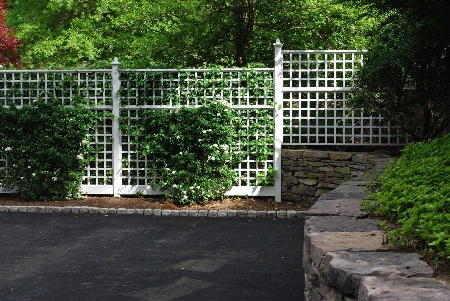 Lattice Privacy Fence w/ Roses