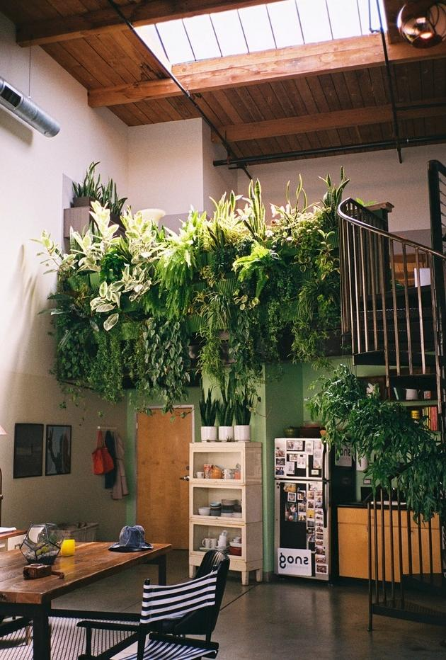 Clever Indoor Balcony Garden Ideas With Various Plants And Good...