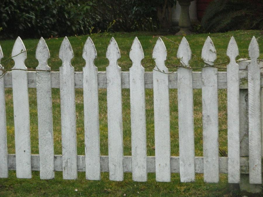Fence Photo Picket