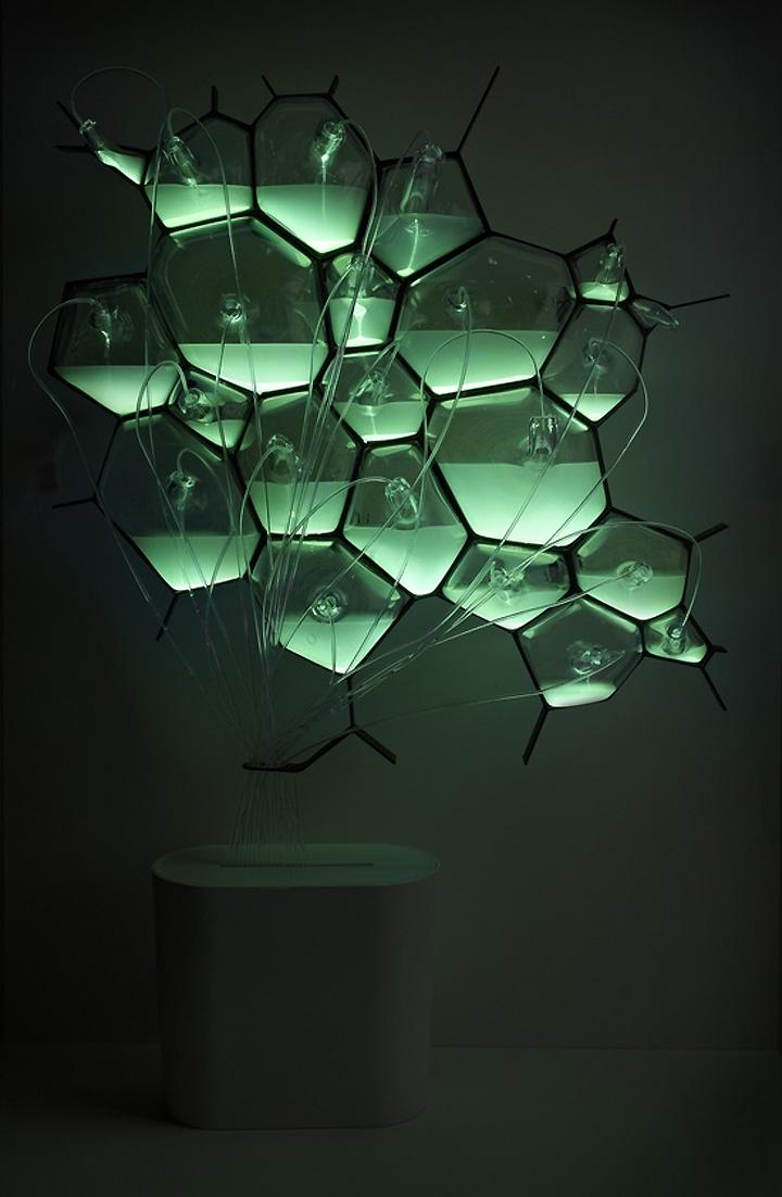 Bio Light concept light fixture by Philips 03 Bio Light concept...