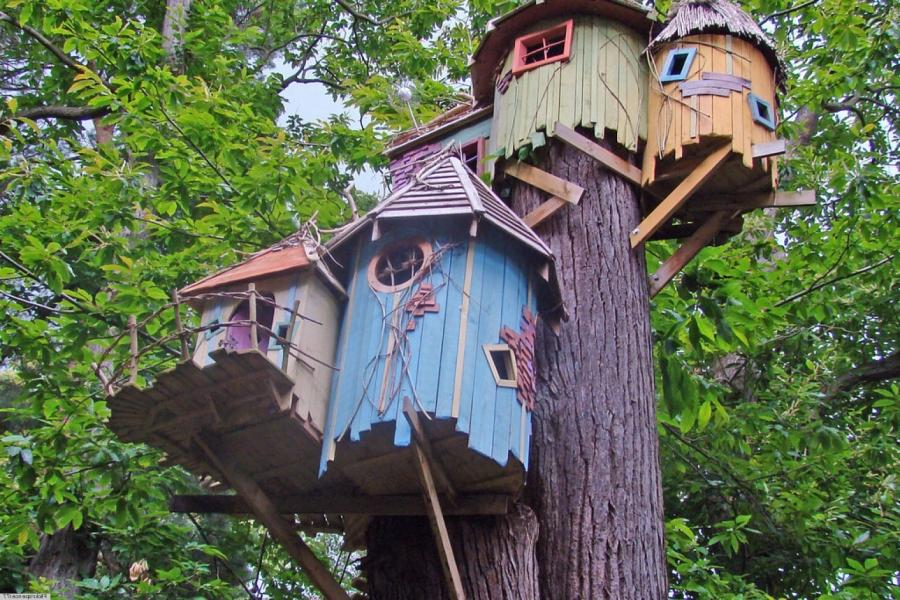Photos Extreme Tree Houses Gallery