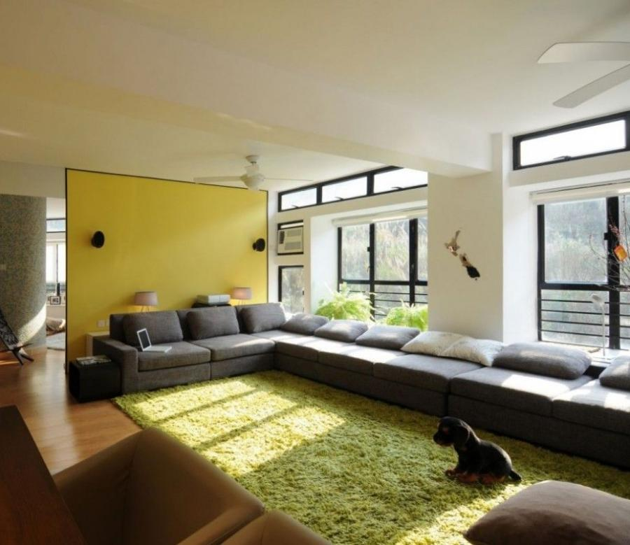 Color Combination For Living Room Photos