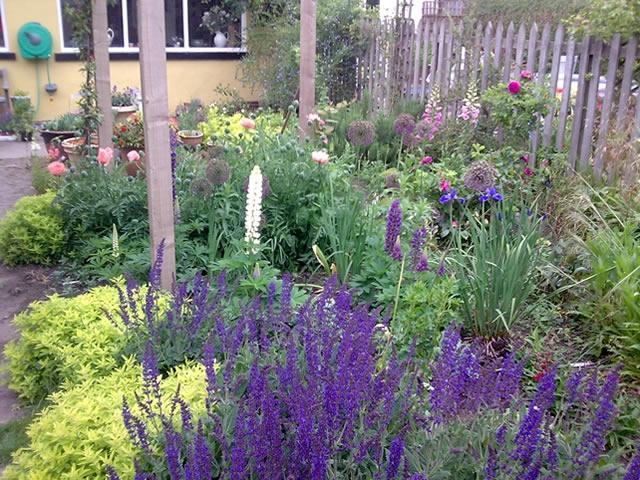 Cottage garden design photos