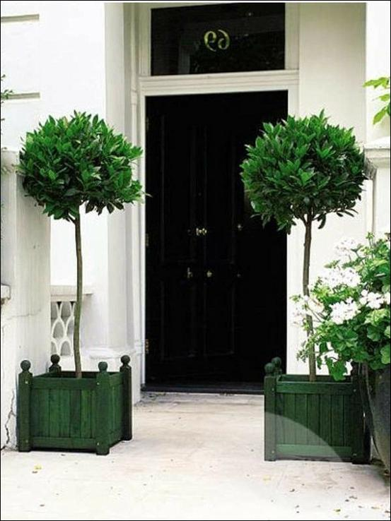 Photos Black Exterior Doors
