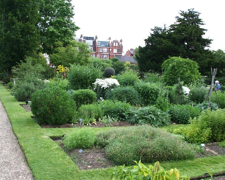 The Chelsea Physic Garden was established in 1673. Hereu the...