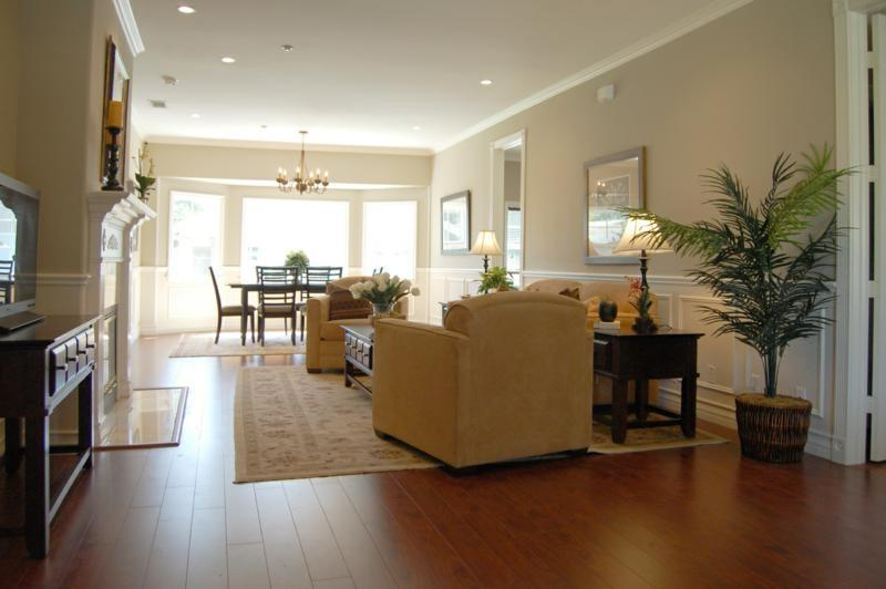 Staged Living Room Photos