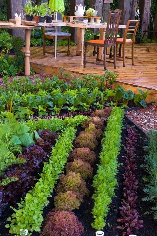 Красивый огород своими руками как сделать красивые грядки