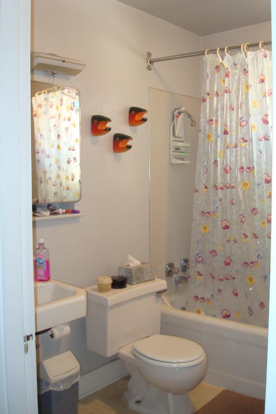 Simple bathroom designs photos for Simple bathroom designs photos
