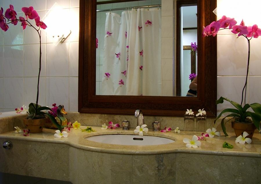 Bathroom : Clean Bathroom Decoration Eas Bathroom Decorating Eas...