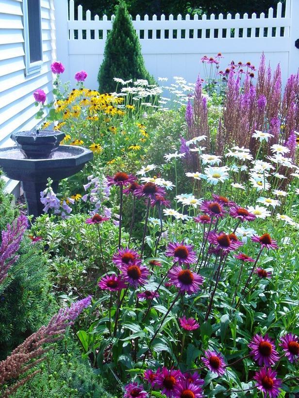 Beautiful cottage garden photos