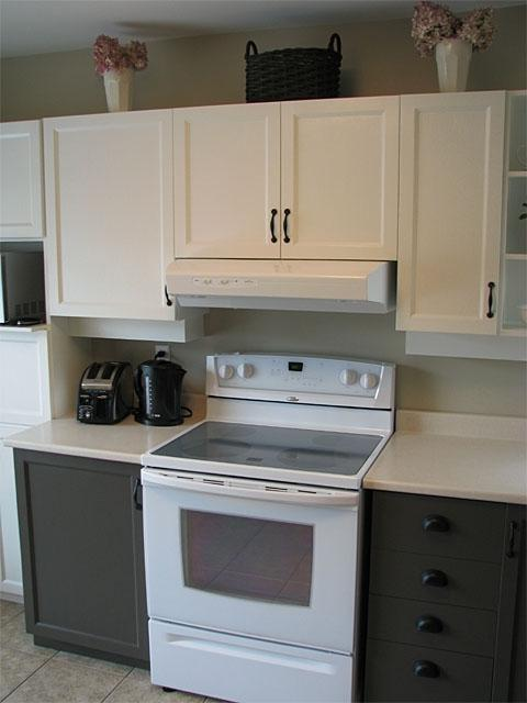 Photos Different Kitchen Cabinets