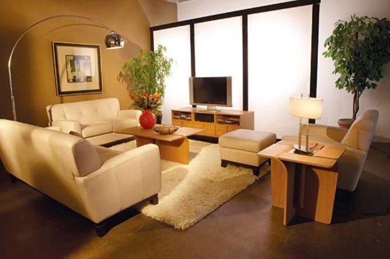 photos of a nice living room