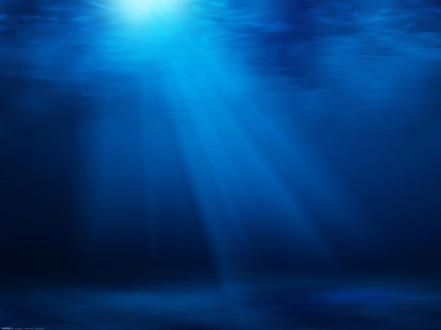 underwater photos ocean wildlife pictures wallpapers