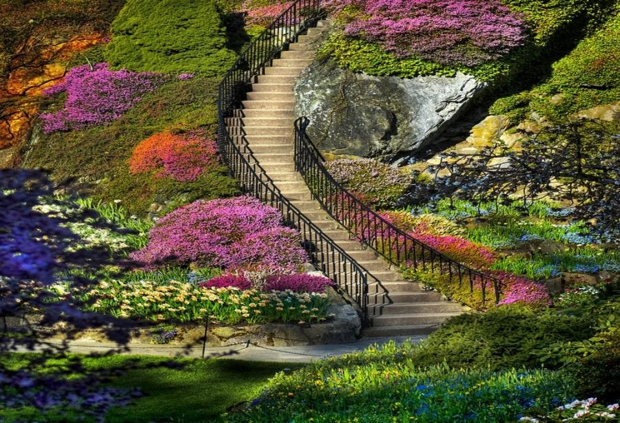 Photos Of The Best Gardens In The World