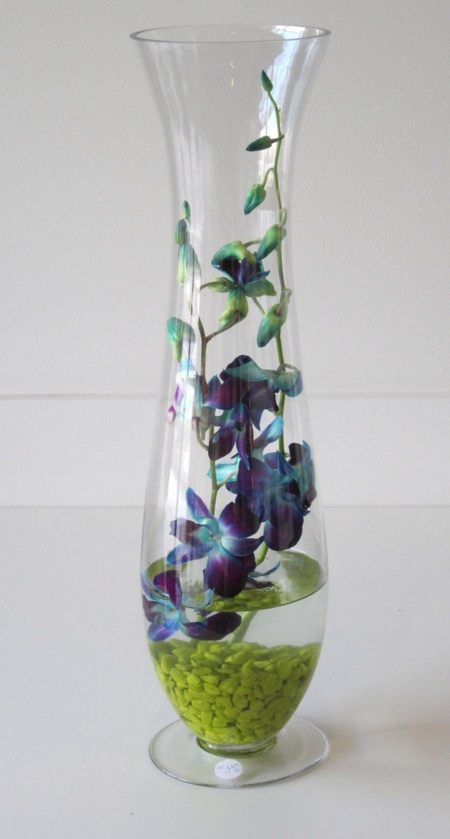 Orchid In Glass Vase Photo
