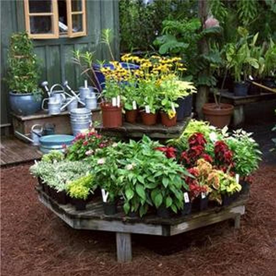 Small flower bed photos for Small flower bed ideas