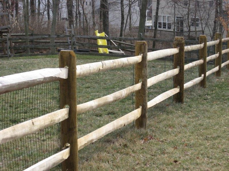 Rail Fences Photo