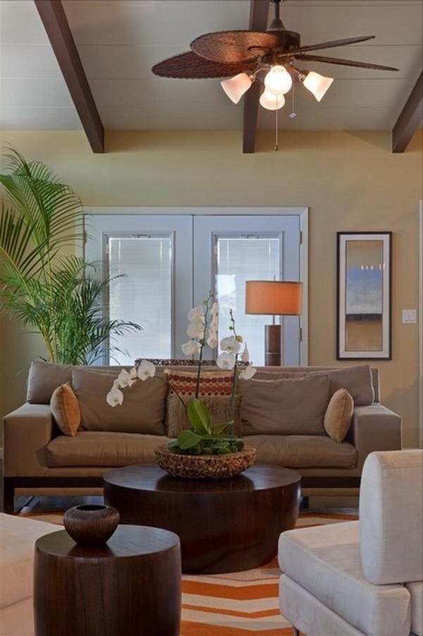 Tropical Living Room Photos