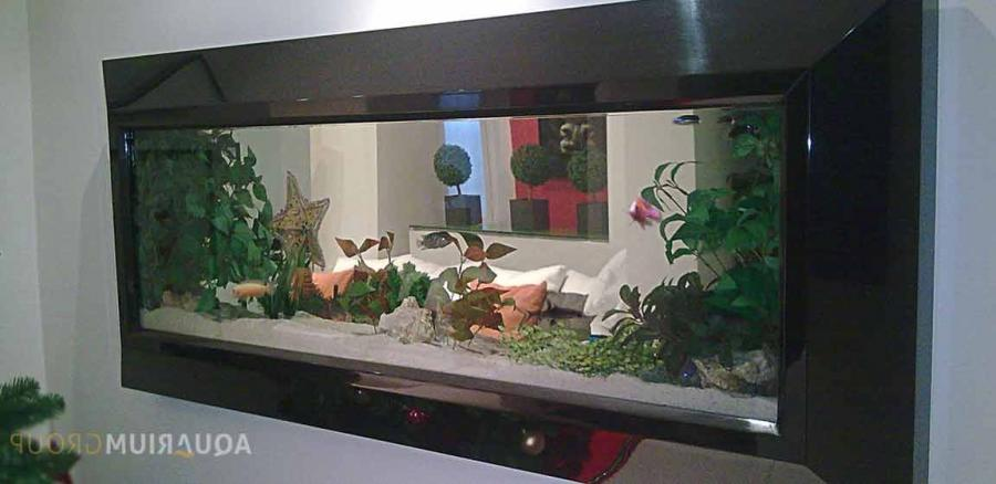 Aquarium for photo frame