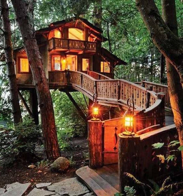 photos of livable tree houses