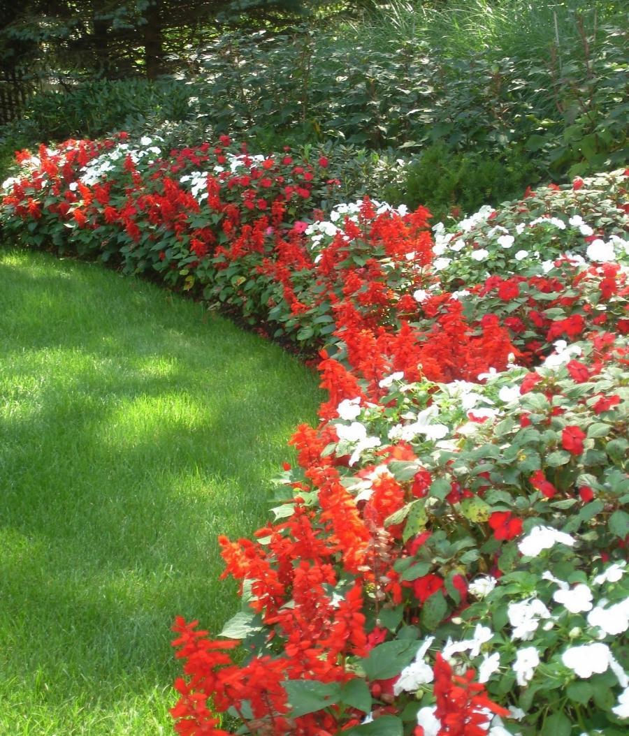 Flower Garden Landscape Photos