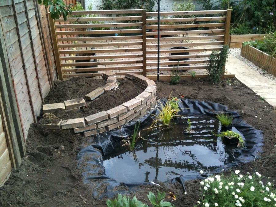 Pond garden photos for Build your own garden pond