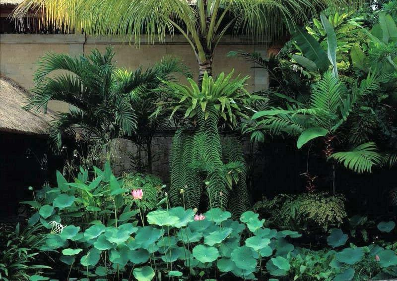 Garden Spa Bali Garden Spa Brooklyn New York