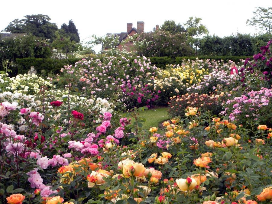 New England Garden Design Photos