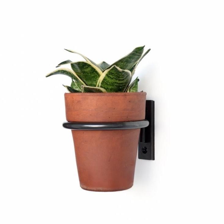 Flower Pot Photo Holders