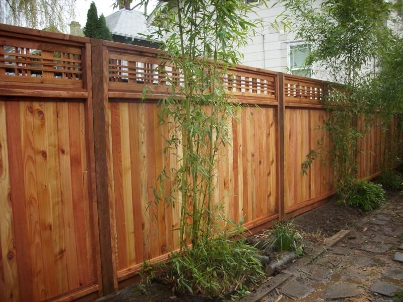 Lattice fence with bamboo