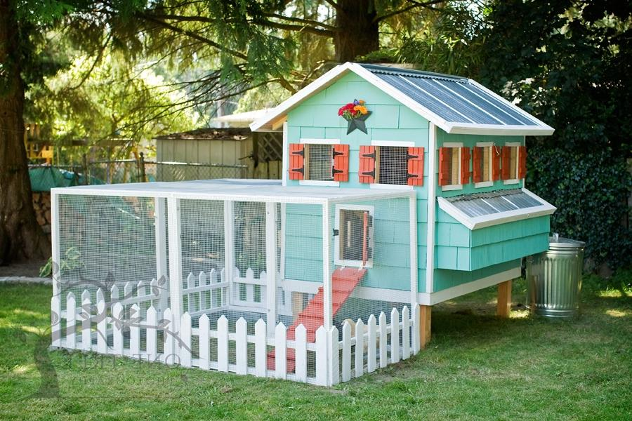 Photos of chicken houses for Fancy chicken coops for sale