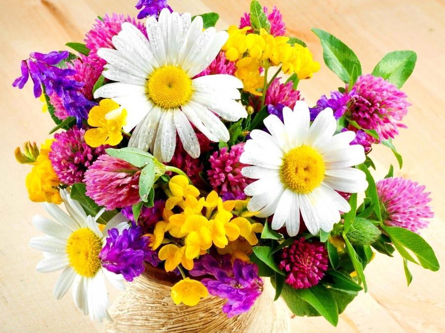 Фото красивые полевые цветы букеты 165