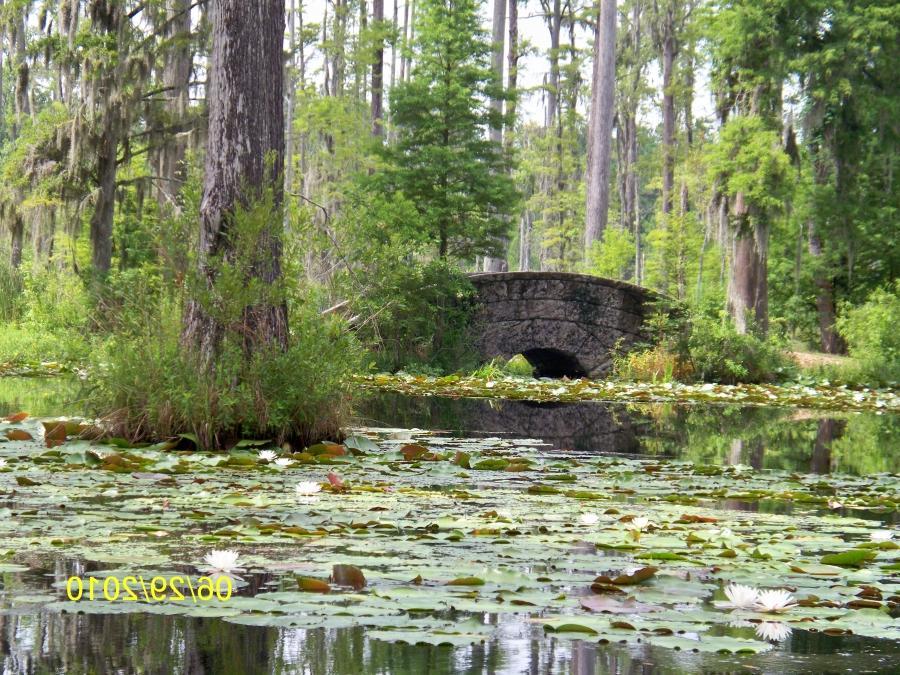 Cypress Gardens South Carolina Photos