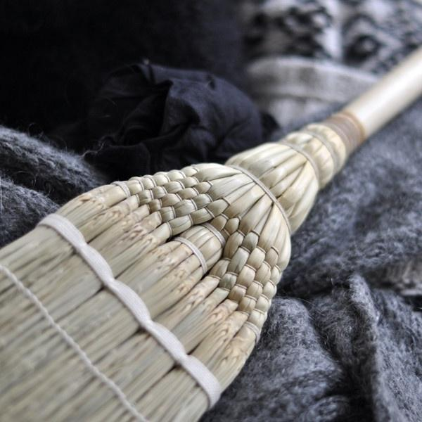 Japanese Broom Photo