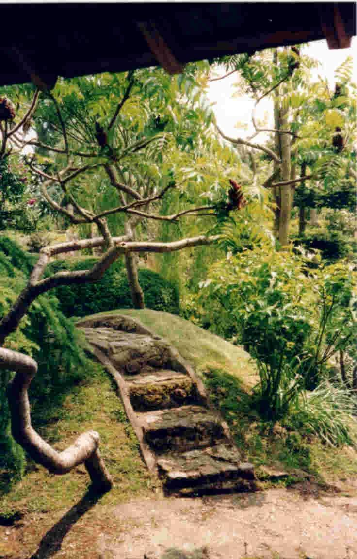 Meditation garden photo for Japanese meditation garden