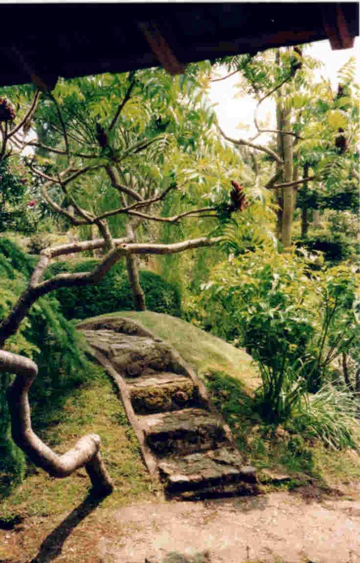 Meditation garden photo for Simple japanese garden