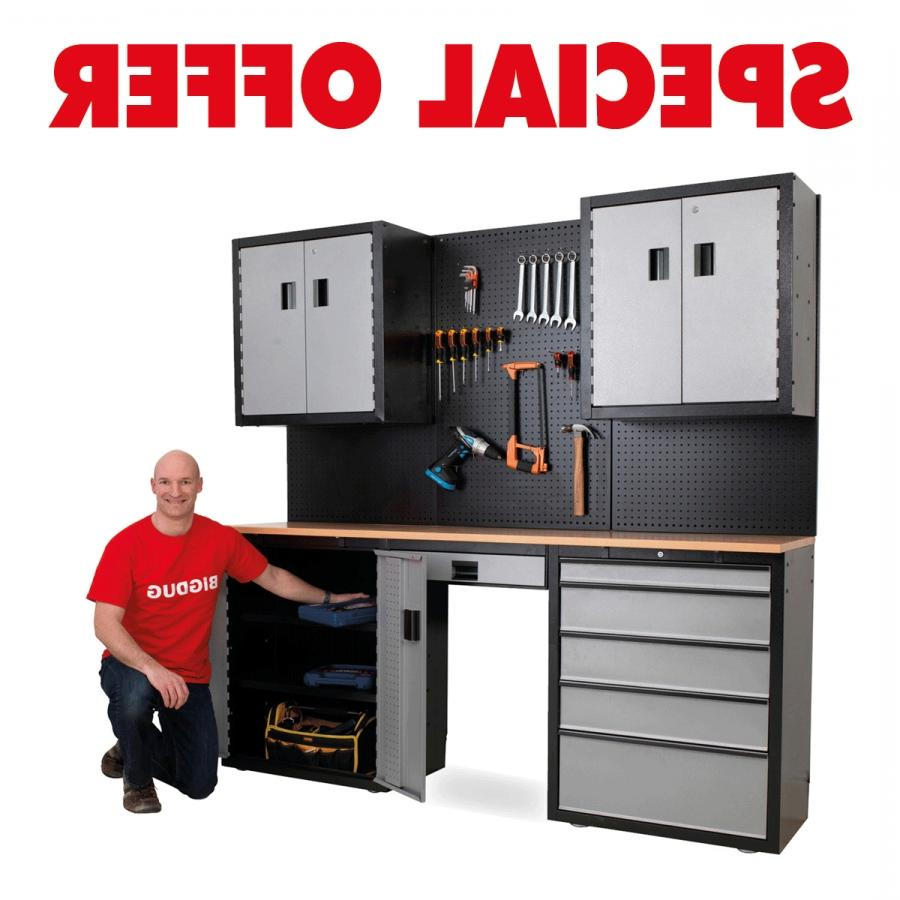 Aluminum Cabinet Cabinet Garage Photo Storage System