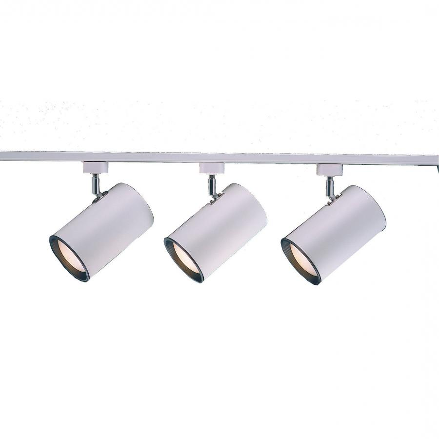 Startling Track Lighting Fixtures Cfl Bulbs