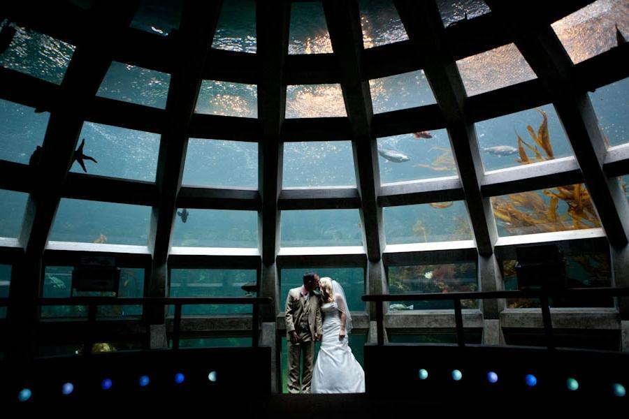 Seattle Aquarium Photos