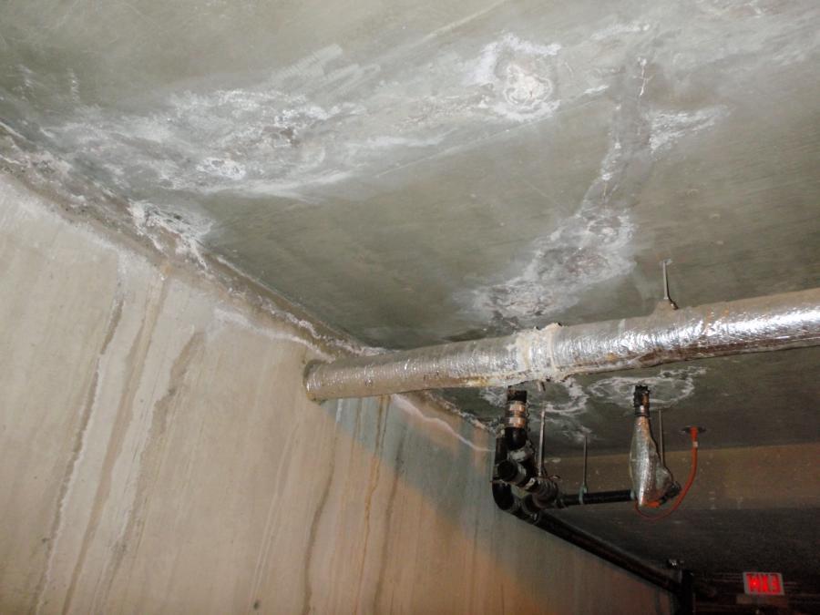 Ceiling Leak Photos