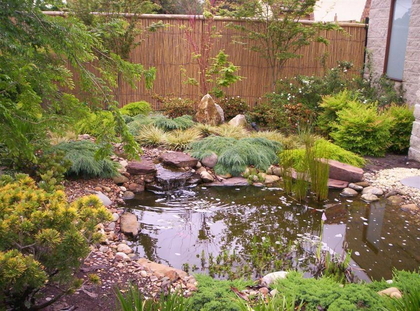 Japanese garden courtyard photos for Courtyard landscaping melbourne