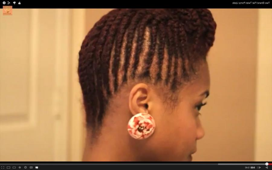 Two Strand Flat Twist Pomp Updo ...