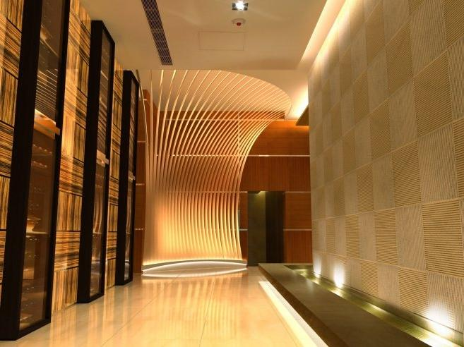 Modern Home Corridor Design Ideas and Pictures