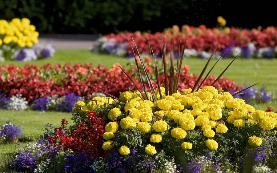 Photos of beautiful flower beds for Spring flower garden designs