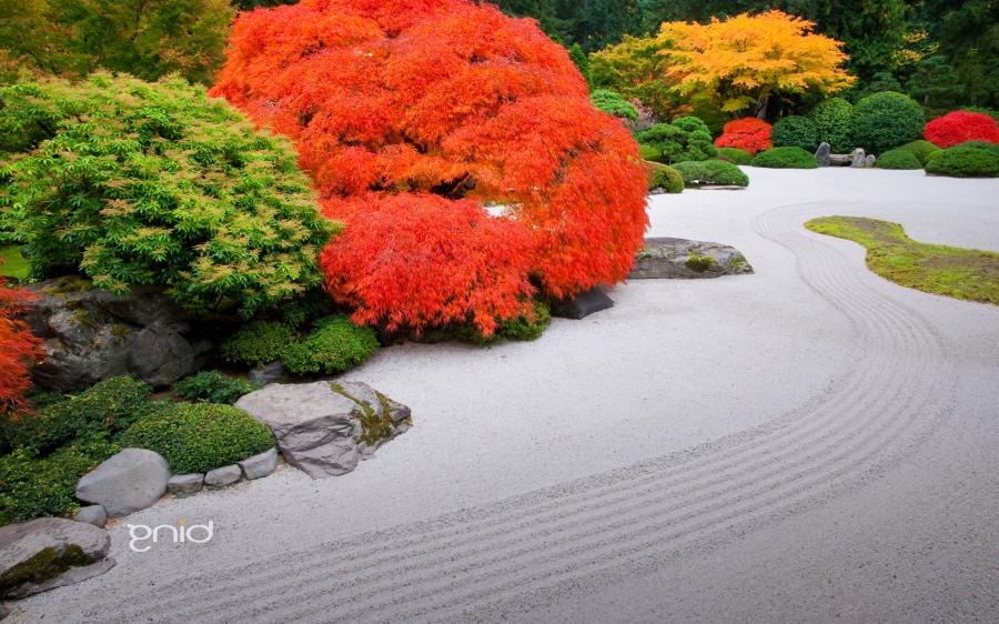 Japanese garden portland photos