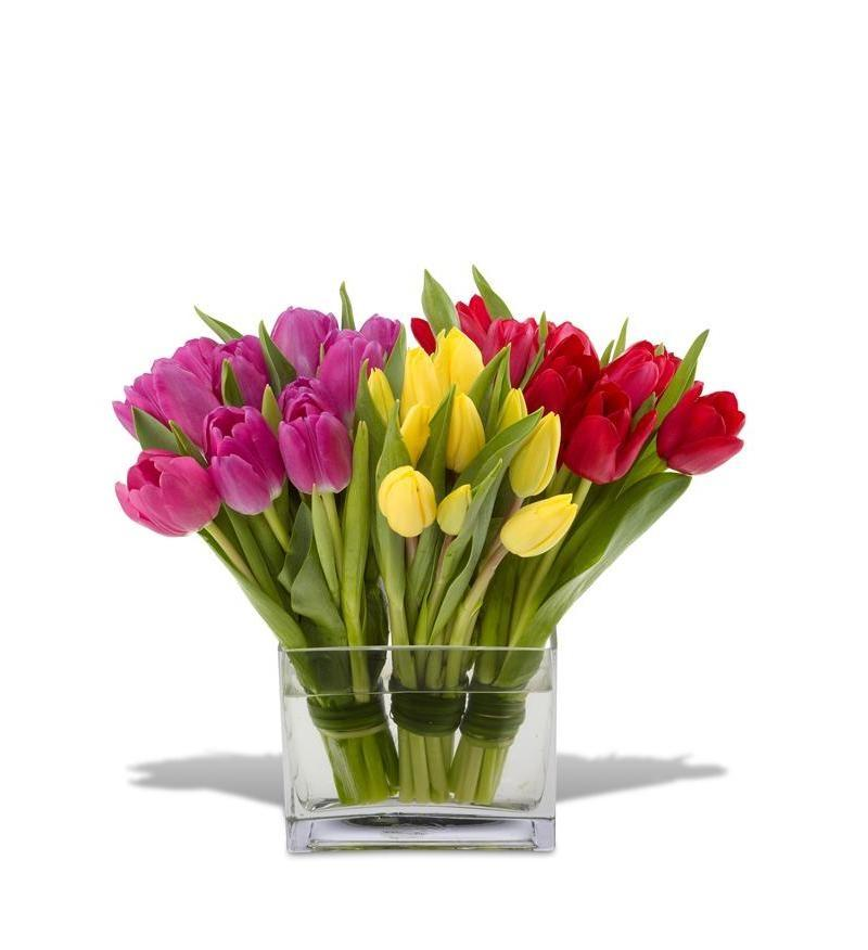 Tulip Flower Arrangement Photos