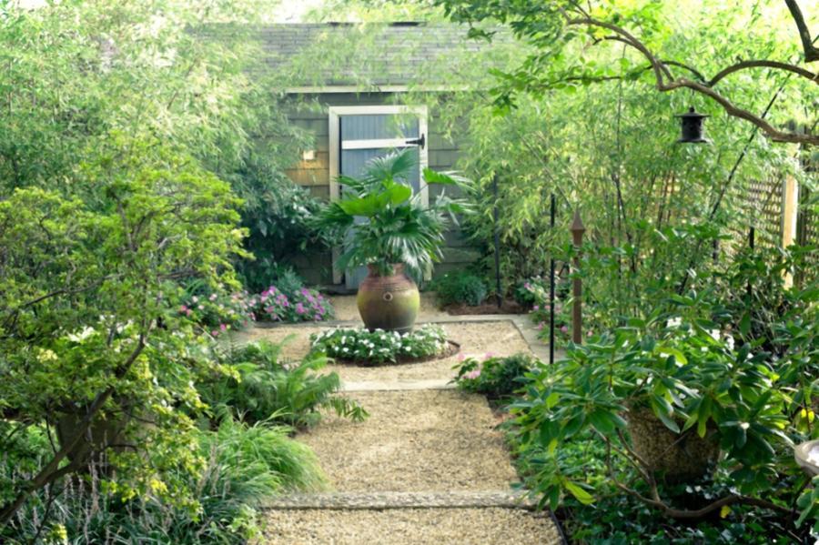 Small tropical gardens photos for Small tropical garden designs
