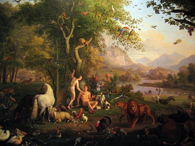 Real Photos Of The Garden Of Eden