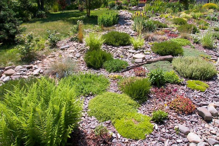 Hillside Rock Garden Photos