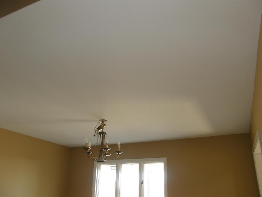Popcorn Ceiling Removal / Laminate Ceiling with...